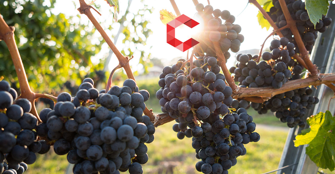 USPS-Wine